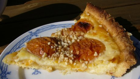 Aprikosenkuchen