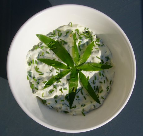 Brlauch-Mascarpone-Dip