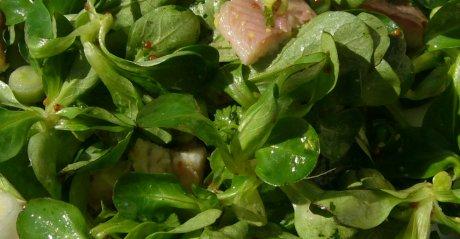 Feldsalat mit Räucheraal