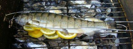 gegrillte Zitronenforelle vorbereitet