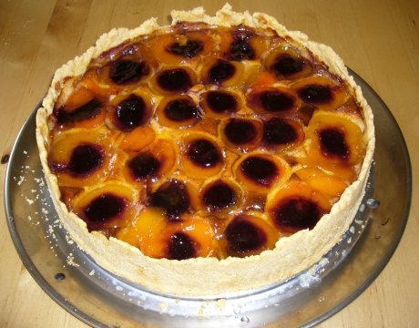 Ksekuchen mit Aprikosen