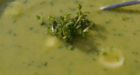 Kartoffel-Lauch-Suppe mit Kräutern