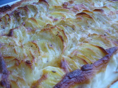 Kartoffelgratin
