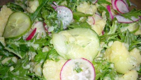 lauwarmer Kartoffelsalat mit Mizuna