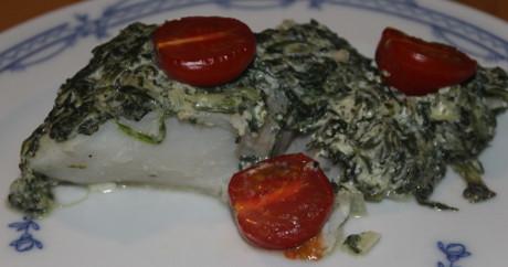 Seelachs mit Spinat überbacken