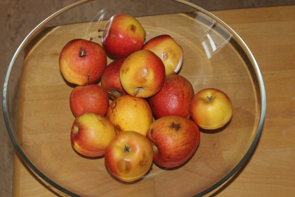 Apfel mit Schönheitsfehlern